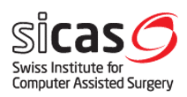 Logo de l'entreprise SICAS, Swiss Institute for Computer Assisted Surgery.